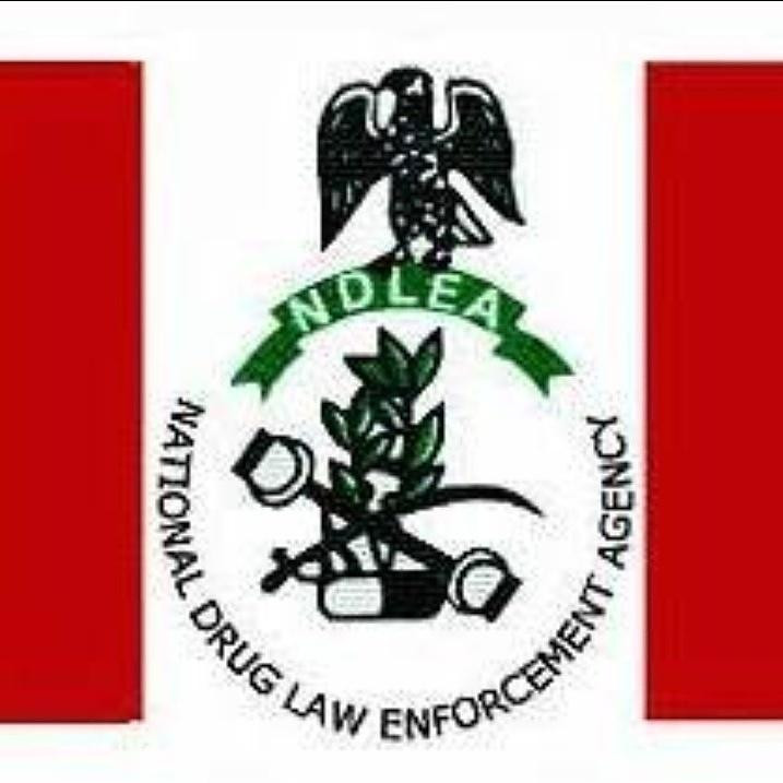 Researches show high drug use in Lagos State, says NDLEA boss